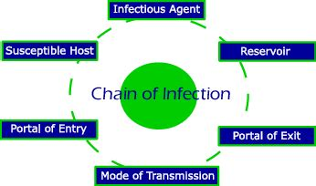Prevention of communicable diseases essay